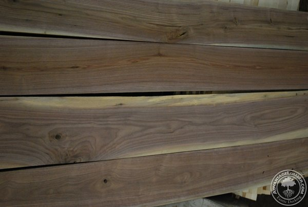 The sapwood of Walnut is very distinctive from the darker colored heartwood