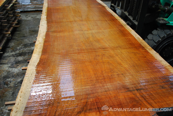 Jatoba (Brazilian Cherry) slabs have live edges featuring all parts of the tree.