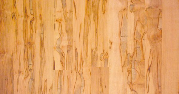 Wood Of The Month Ambrosia Maple Wormy Maple