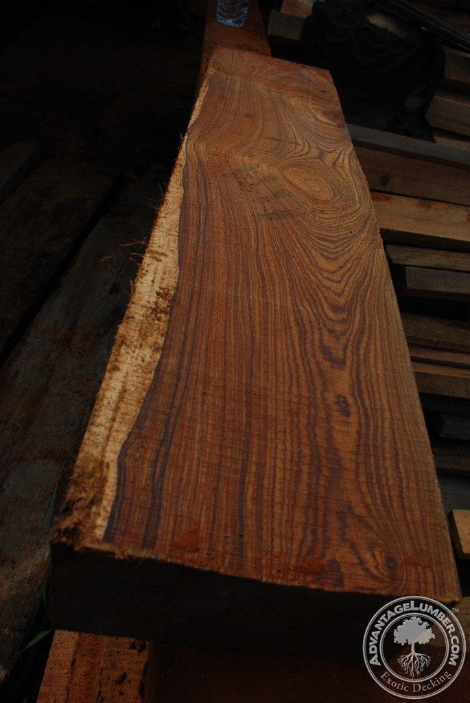 Beautiful piece of Cocobolo harvested by hand arriving from Mexico